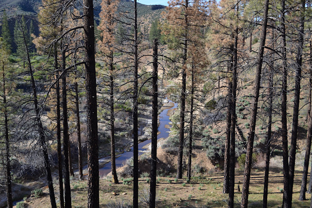 Piru Creek from Grade Valley Road