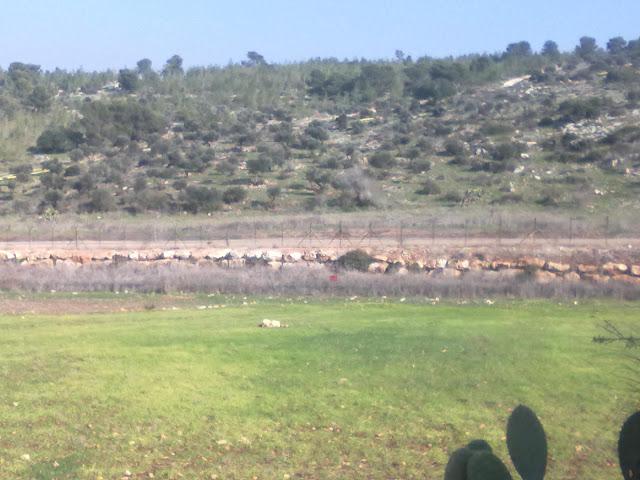 صور جديدة في اول الربيع 15122011085