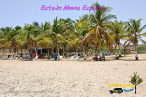 Playa El Angel NE017, estado Nueva Esparta, Margarit
