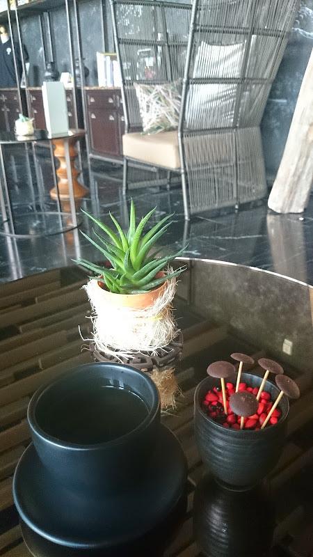 DSC 0323 - REVIEW - Sofitel So Bangkok (Water Room)