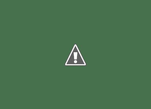 18 05 2013 12+copy - Кошки ))