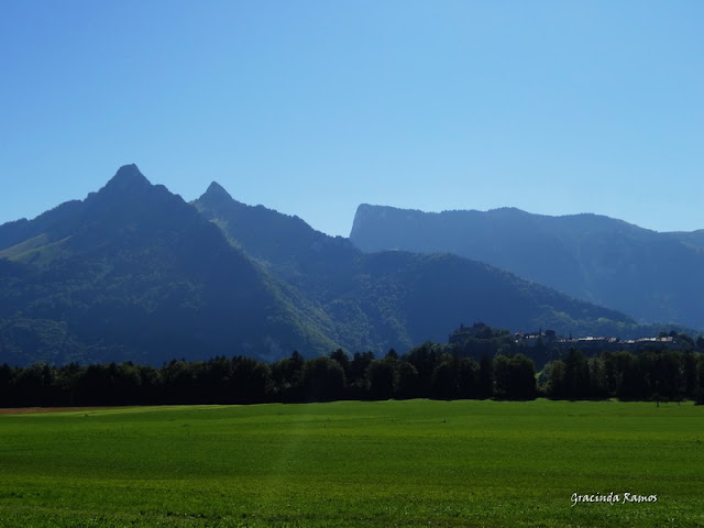 passeando - Passeando pela Suíça - 2012 - Página 15 DSC05614