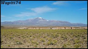 Un mois aux pays des Incas, lamas et condors (Pérou-Bolivie) - Page 3 CD3%2520%252847%2529