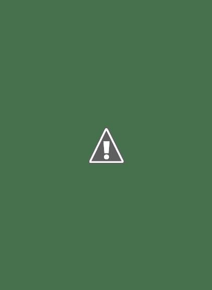 Pequeno jardim vertical para hortaliças.