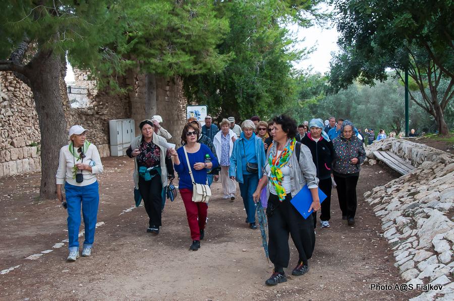 Экскурсия в Антипатрис. Парк Афек. Гид в Израиле Светлана Фиалкова.