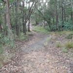 Trail below Lapstone Rail line (146574)