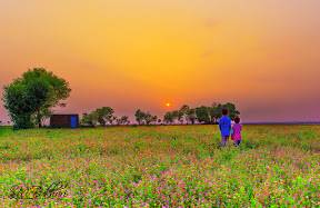 Beautiful view of sunset in Head Marala - Sialkot, Punjab, Pakistan <3