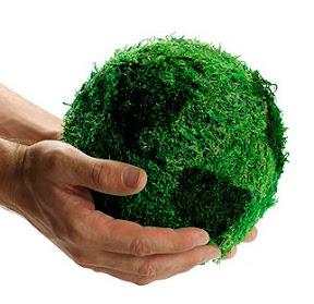 10 Cosas Que Debes Hacer Para Llevar Una Vida Más Verde