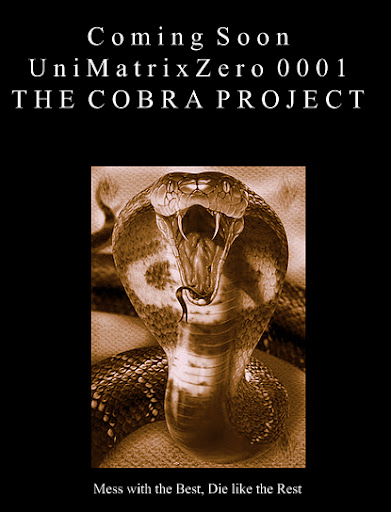 Cobra%252520project%252520background.jpg