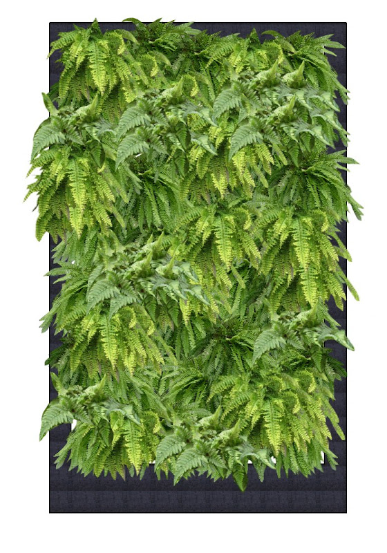 Segunda opción Fotomontaje con helechos jardín vertical interior barcelona listado especies leaf.box