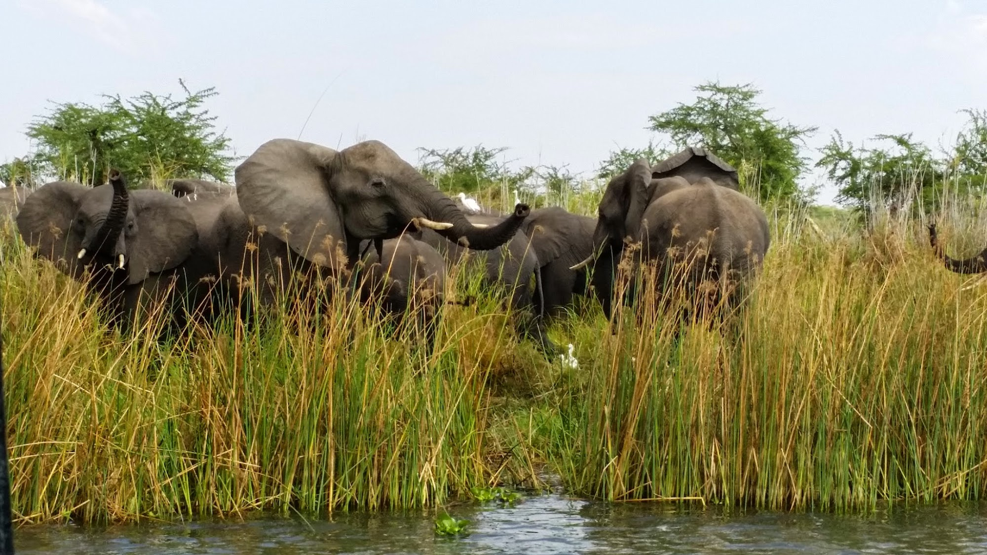 Reisinformatie Malawi