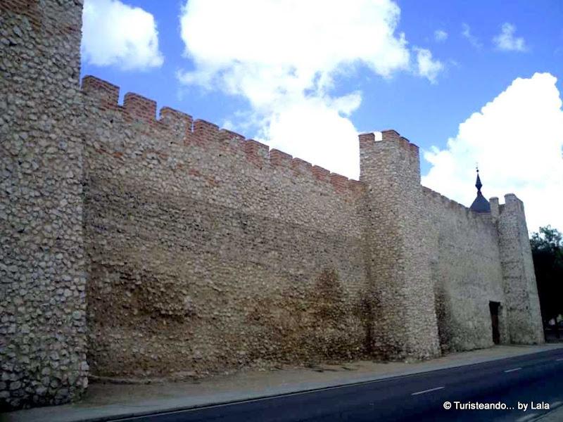 Murallas medievales de Olmedo en el Paseo de la Soterraña