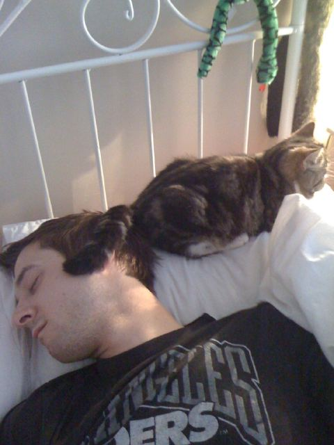 Arthur Darvill and a cat