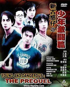 Người Trong Giang Hồ 3: Thiếu Niên Hạo Nam - Young And Dangerous 3 poster