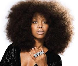 eryka badu cabello afro cuidado sano perfecto champu ideal