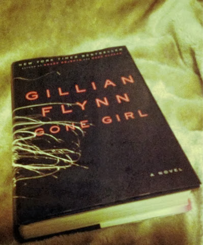 the effects of recession in gone girl a novel by gillian flynn The thirst for revenge is reflected in almost every field of life gone girl is a classic novel by gillian flynn it mainly talks about the lies, betrayal, and disrespect between close.