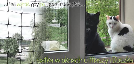 Zabezpieczenie okna