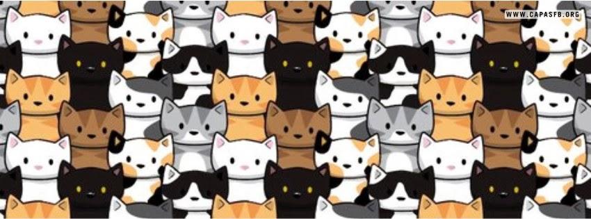 Capas para Facebook Gatinhos