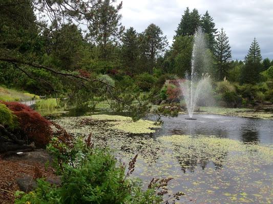 VanDusen Botanical Garden, 5251 Oak Street, Vancouver, BC V6M 4H1, Canada