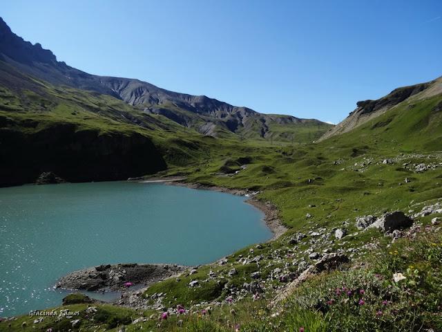passeando - Passeando pela Suíça - 2012 - Página 9 DSC02011