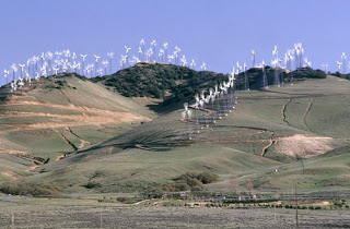 Tehachapi Pass Wind Farm Image