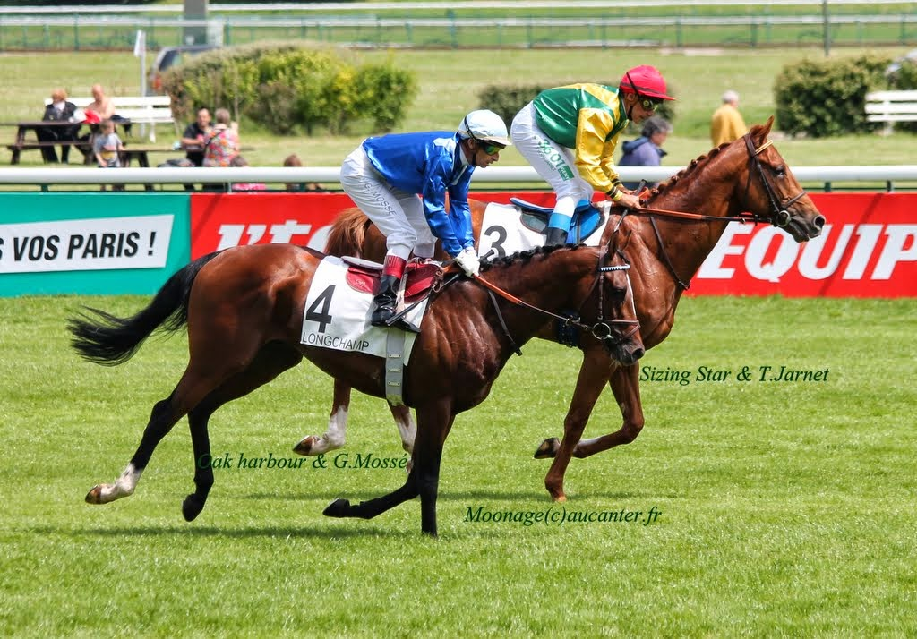 Photos Longchamp 25-05-2014 IMG_1103