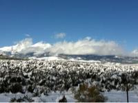 Organic Peddler - Del Norte Colorado