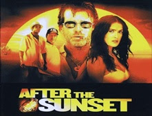 فيلم After the Sunset