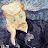 Barış Tunahan avatar image