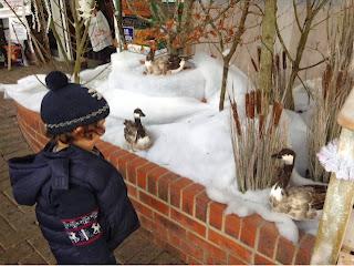 my boy enjoying a winter wonderland scene