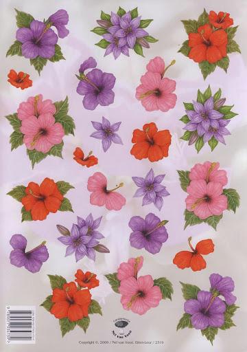2319 Nel v.Veen bloemen.jpg