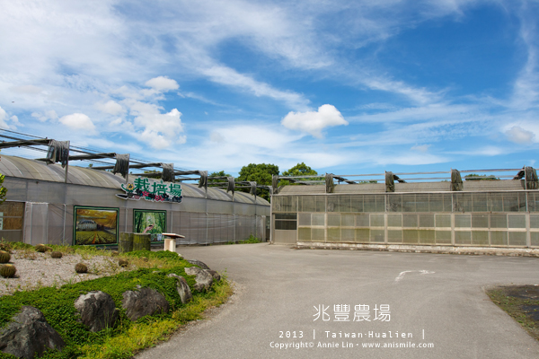 【走走花蓮】動物農場小旅行│新光兆豐農場