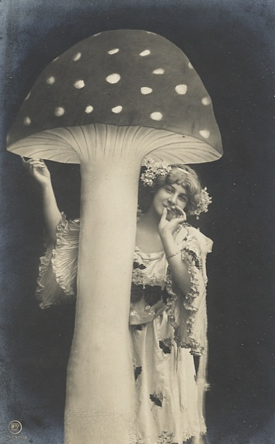 vintage fun mushrooms