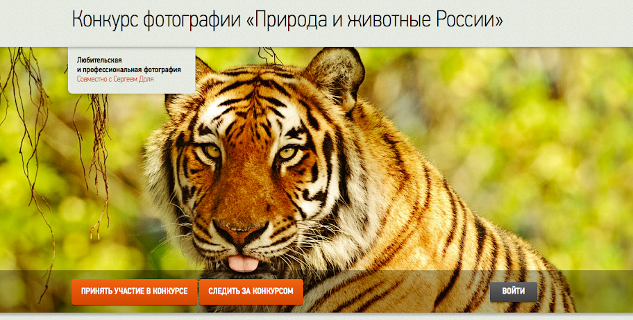 """Фотоконкурс """"Природа и животные России"""""""