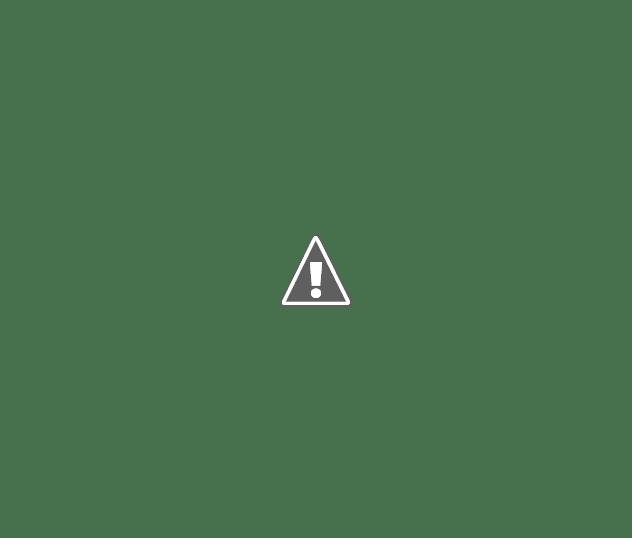 Обзор эхолотов для рыбалки.  Картплоттер Raymarine A50 отзывы.