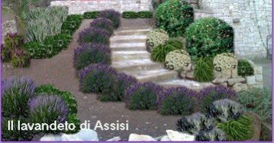 Progetti giardini online gratis progetti giardini privati - Idee per realizzare un giardino ...