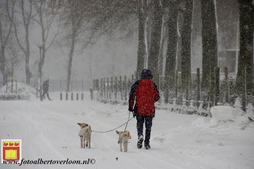 eerste sneeuwval in overloon 07-12-2012  (22).JPG