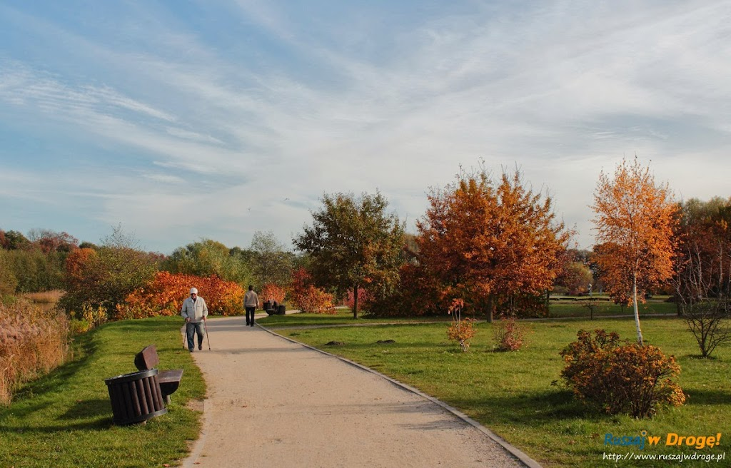 Park Reagana w Gdańsku - ścieżki spacerowe