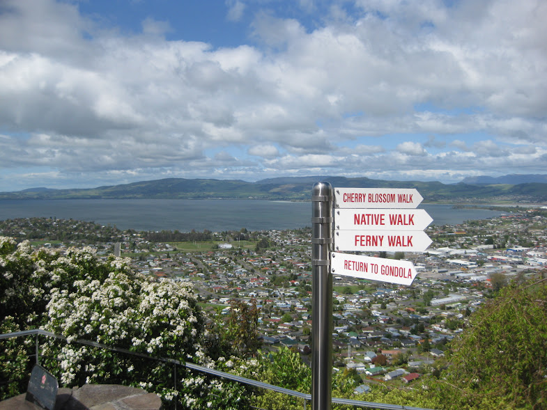 View from the top of the Skyline gondola in Rotorua