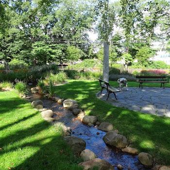 Engelska parken 1001