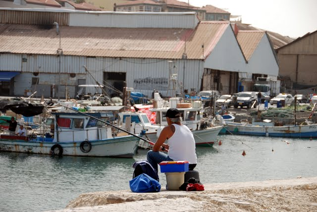 fishing in jaffa port