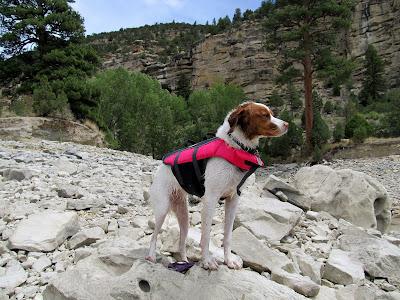 Torrey in her new life jacket