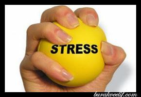 Çağın Vebası... Stress! Ve Baş Etme Önerileri