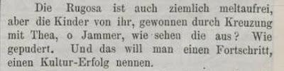Rosen-Zeitung › Bd. 10 (1895) › Heft 5