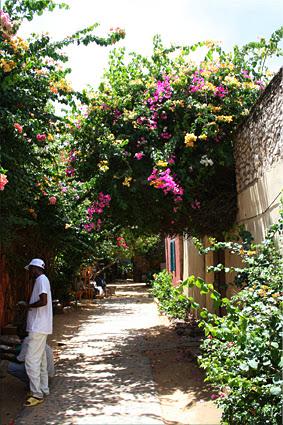 Paseando por las callejuelas de Gorée