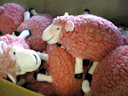 I'd love to know where these pink sheep came from!