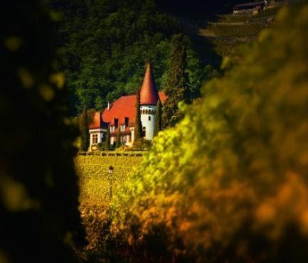 Château Maison Blanche - Yvorne