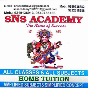 sNs Academy The Name Of Success kimdir?