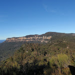Narrow Neck (48971)