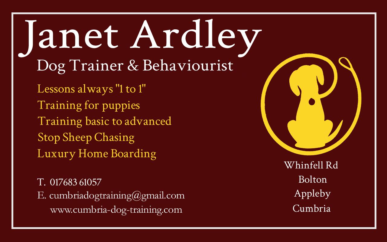 Cumbria dog training my business cards janet colourmoves